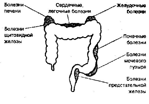 влияние на организм проблем в жкт